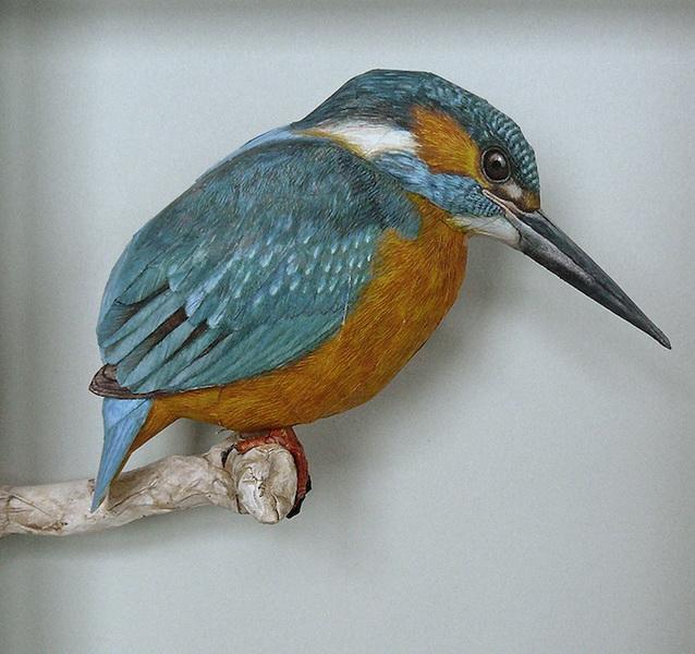 3dbird  Realistic Paper Birds by Johan Scherft