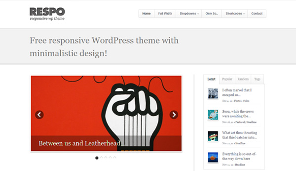 Respo wordpress theme FREE: Respo WordPress Theme