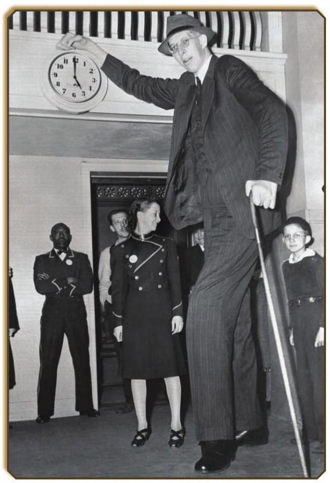 画像 : 人類史上最も背の高かっ...
