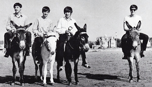 The Beatles on Donkeys 1963 2 The Beatles on Donkeys, 1963