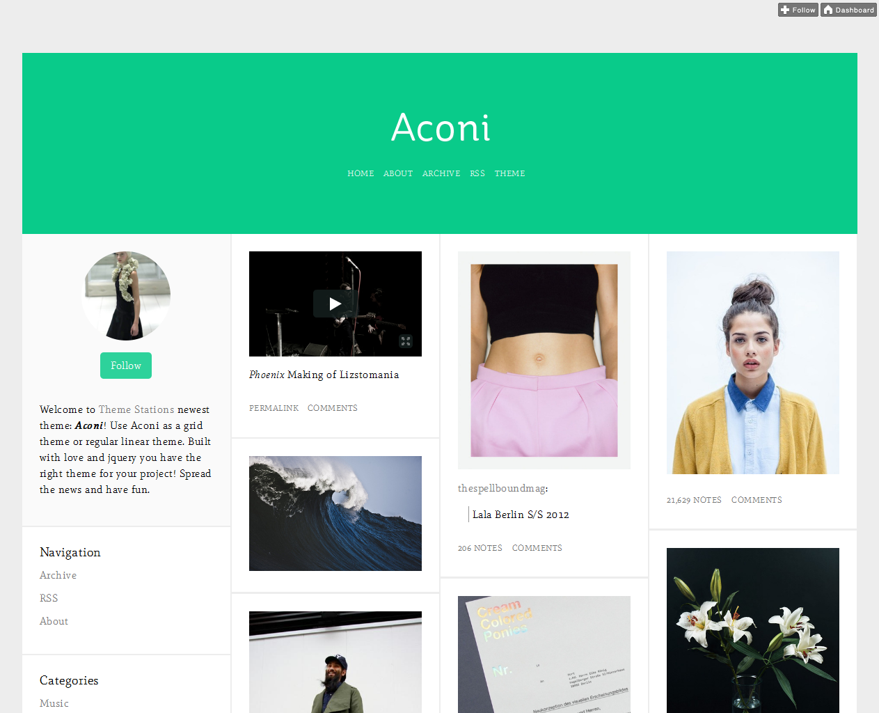 t aconi11 45 Free Grid Based Tumblr Themes