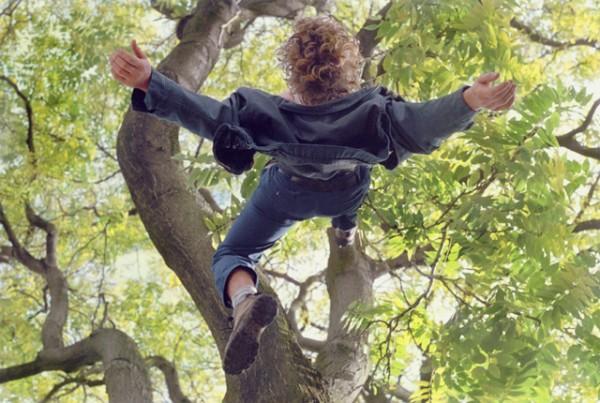 Kerry Skarbakka Green TreeColassal 600x403 Falling down