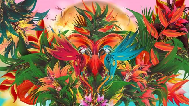 Tropical Paradise 650x365 Tropical Paradise