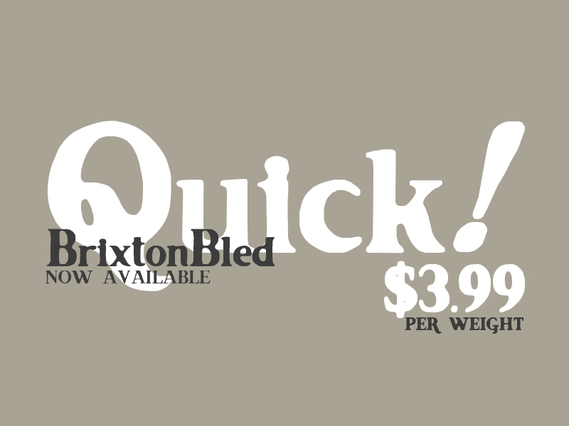 dribbble1 Font Download   Brixton Bled   A Creative Take on Vintage Printing