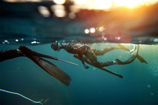 167 Free Dive Hunters