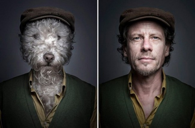"Dogs Dressing Up Like Their Owners2 640x421 650x427 ""Underdogs"" by Sebastian Magnani"