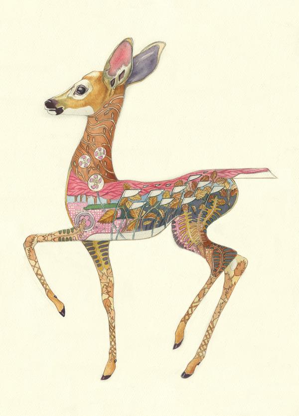 fawn Fallow Deer Fawn by Daniel Mackie