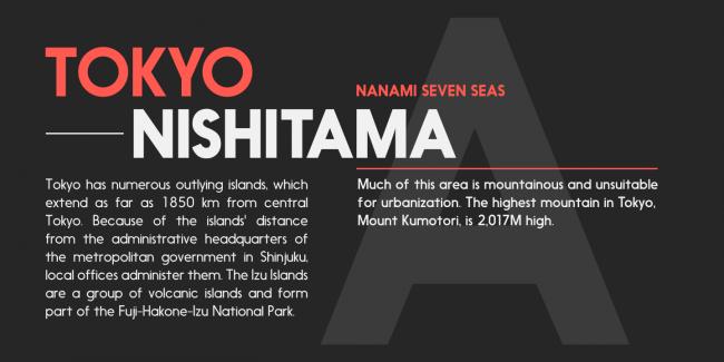 nanami myfonts 5 650x325 NANAMI TYPE FAMILY (18 FONTS)