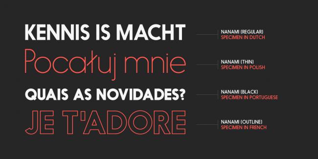 nanami myfonts 7 650x325 NANAMI TYPE FAMILY (18 FONTS)