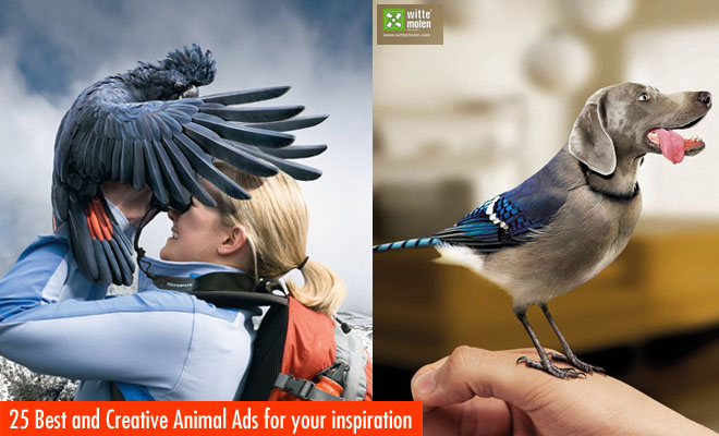 g490 25 Creative Animal themed Print Ads for your inspiration