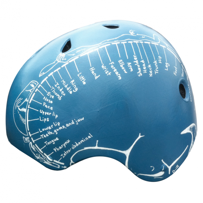 homunculusleft 650x650 Stylish Bicycle Helmets | Wearable Art on Crowd Supply