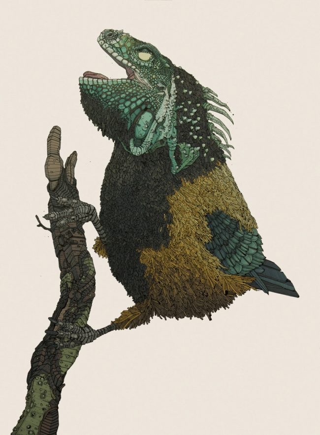 plumed iguana hybrid creature 650x883 Hybrid Creatures by Nicholas Di Genova
