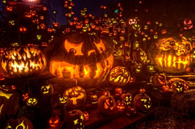 550126 10151300636552318 1660602210 n 650x430 Halloween Pumpkin Art 2013