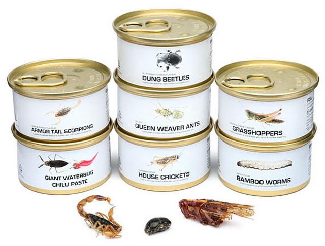 Edible Bugs Gift Can Set 5 Edible Bugs Gift Can Set