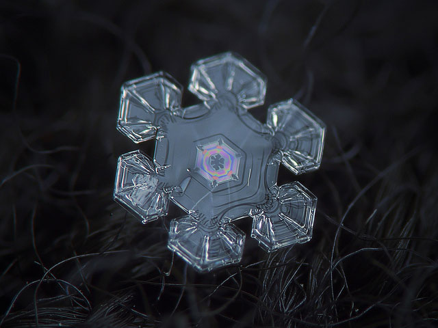 Macro Photography of Snowflakes using normal camera 12 50+ Macro Photography of Snowflakes