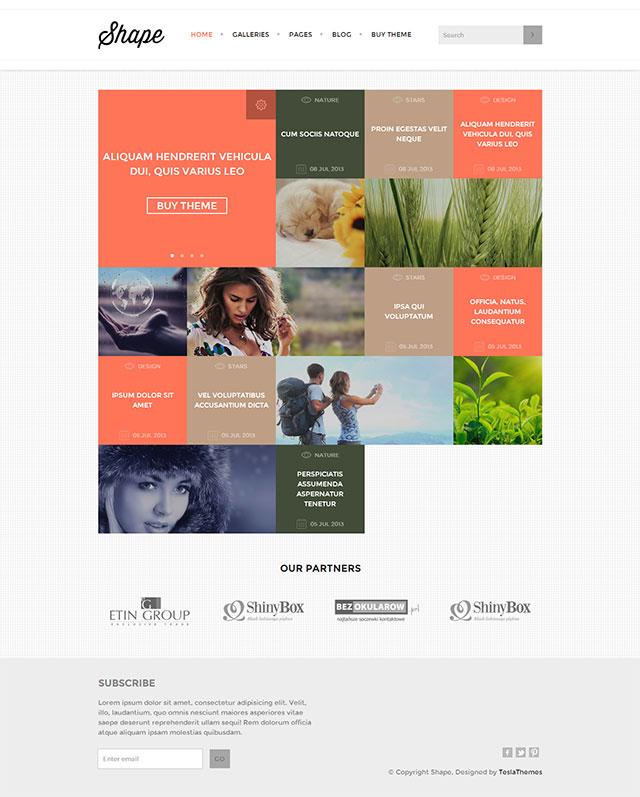 Shape Theme 25+ Photography WordPress Themes