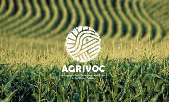 Visual Identity – AGRIVOC1 650x393 Visual Identity – AGRIVOC