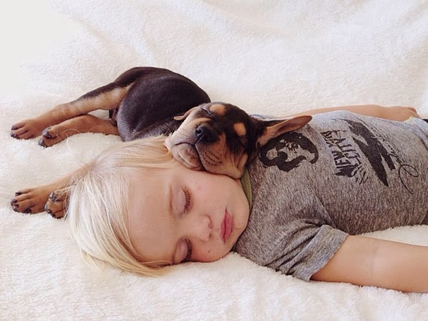 cutest friendship Toddler Naps Every Day With His 2 Month Old Puppy
