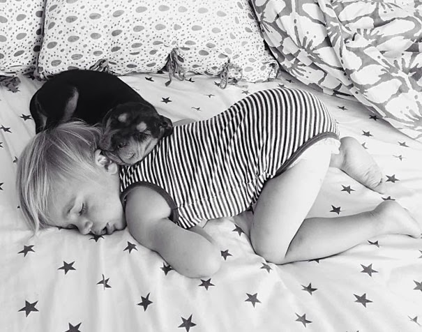 dog and toddler napping together 4 Toddler Naps Every Day With His 2 Month Old Puppy