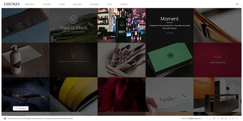 essenza Just The Best WordPress Themes Ever Released