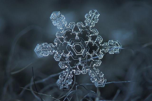 mydesignweek Macro Snowflakes Alexey Kljatov 4 Winter Wonderland by Alexey Kljatov