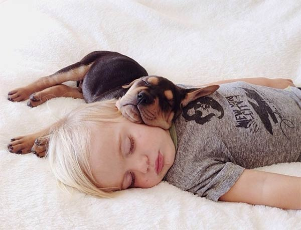 toddler sleep dog1 Cute Photos of a Toddler Napping with His Puppy