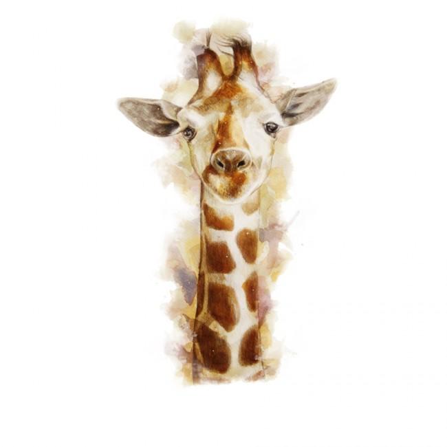 Giraffe T shirt Design by Beart24 design 650x650 La Bat Noir by RoguePlanets & Giraffe by Beart24 T shirts Designs
