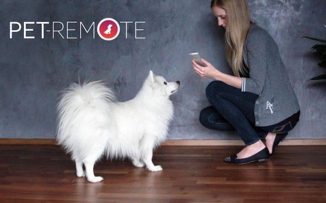 Pet Remote 650x406 Pet Remote