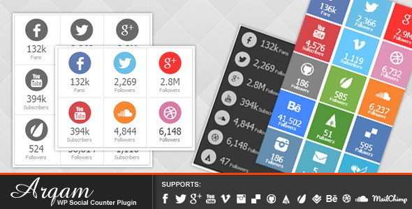 arqam 10 best social wordpress counter plugin