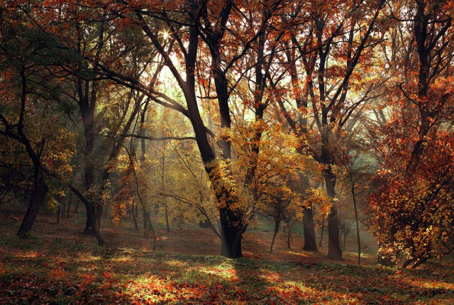 1336137106 10 640x430 Amazing Landscape photography by Alexandru Popovski
