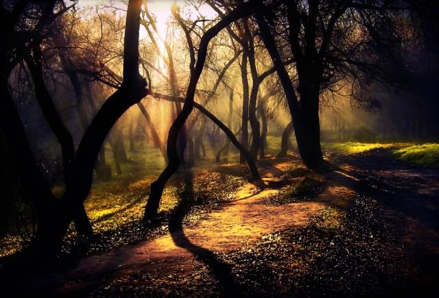1336137147 19 640x435 Amazing Landscape photography by Alexandru Popovski