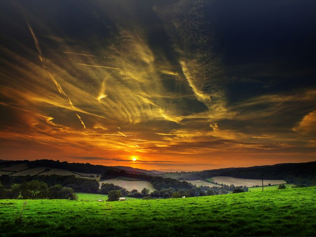 1350208009 0 640x480 The Mystical Nature of Great Britain in Eric Goncalves's photos
