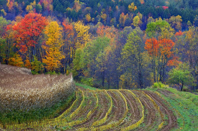 1356442106 11 640x426 Landscape Photography by Kevin McNeal