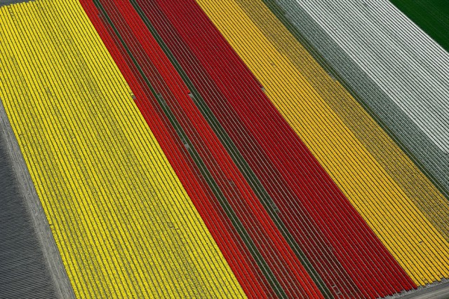 1359705970 1c 640x427 Colorful Aerial Photography by Normann Szkop