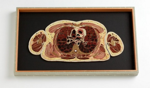 1359985634 10 640x376 Anatomical Quilling by Lisa Nilsson