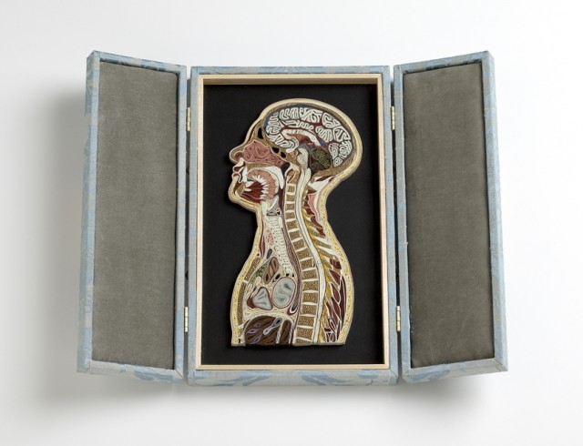 1359985645 2 640x490 Anatomical Quilling by Lisa Nilsson