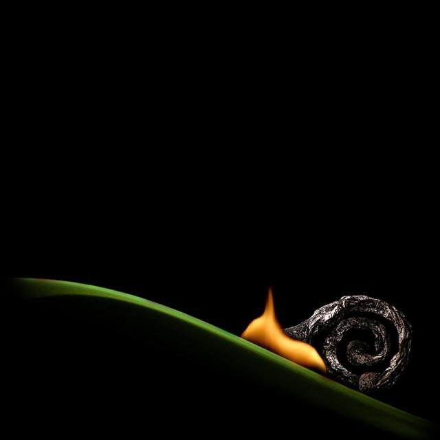 1360742265 3 640x640 Burning Matches Art by Stanislav Aristov
