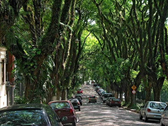 1363080697 7 640x480 The Greenest Street in the World