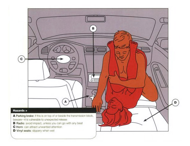 Car Sex Positions 2