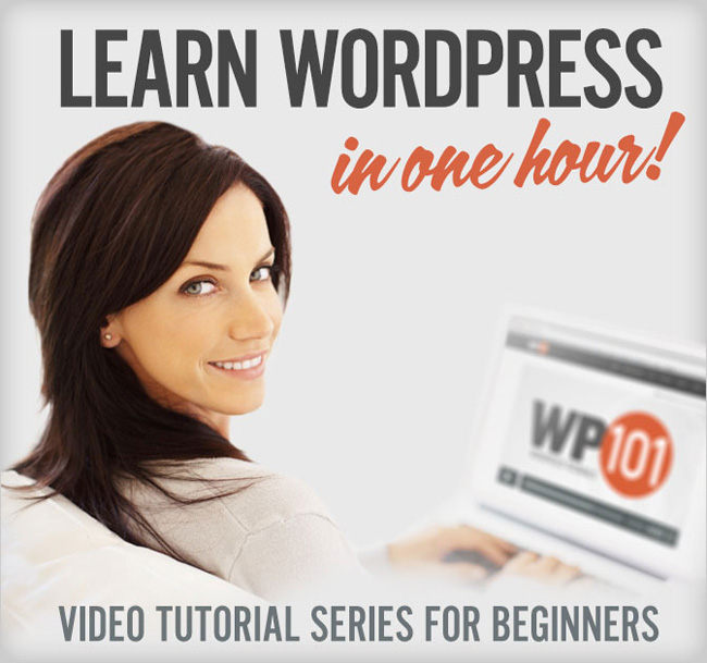 md9 Learn how to use WordPress in one hour without reading a word   only $19!