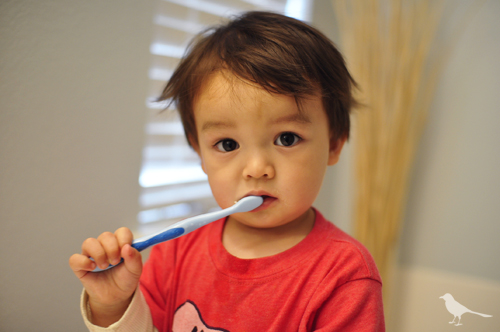 toddler brushing teeth Get The Most Out Of Your Toothpaste