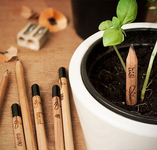 1139 Sprout A Pencil That Grows