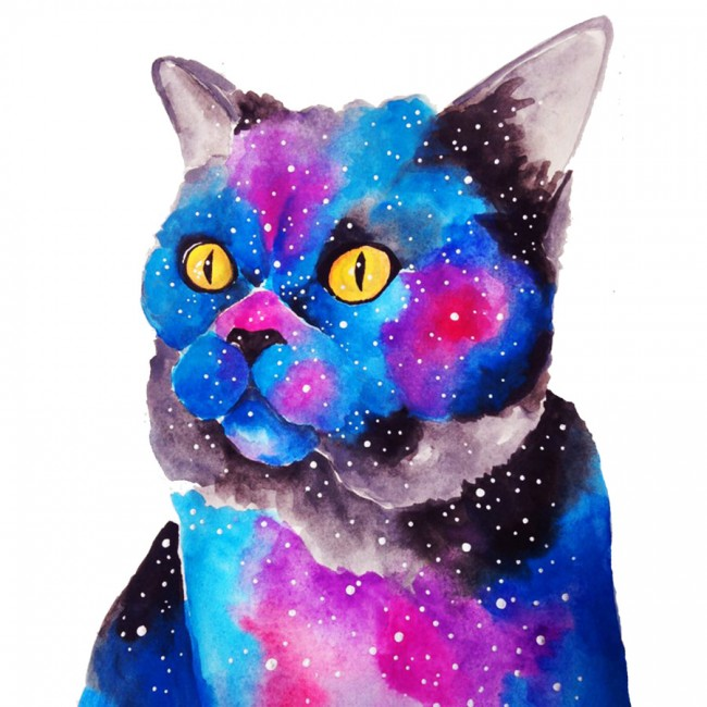 Galactic Cat Tee Design by MihaelaFiscuci