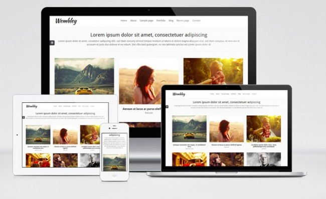 wembley 01 650x397 Wembley : Free Responsive Portfolio WordPress Theme