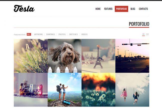 Tesla 02 650x437 Tesla : Free Responsive Porfolio WordPress Theme