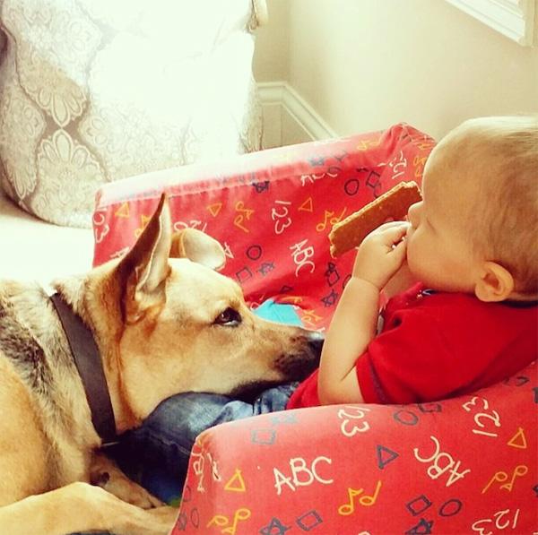 cartertoby7 Amazing Photos Show the Bond Between Toddler and His Dog