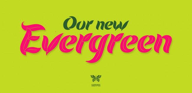 evergreen 001 650x317 Evergreen
