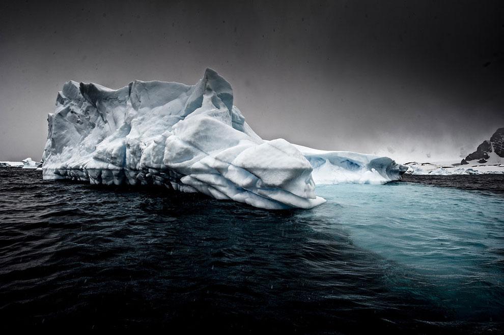 1101 Serene Icebergs