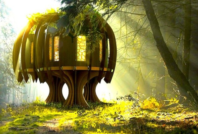 1395678961 1 640x434 The Quiet Treehouse by Blue Forest
