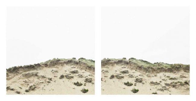 Brian David Stevens 650x335 Dune Work by Brian David Stevens